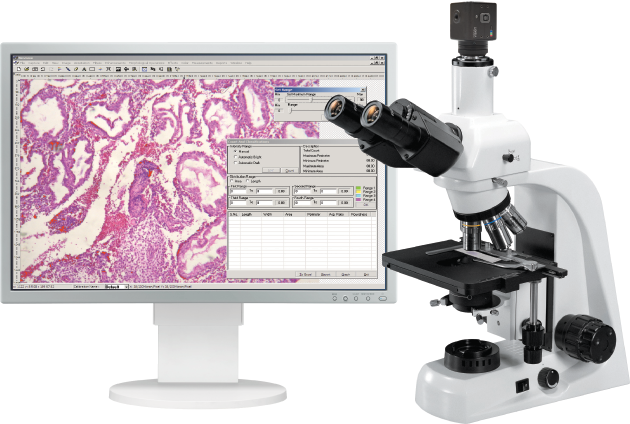 Vision Bio Digital Analysis System for Medicine and Biology