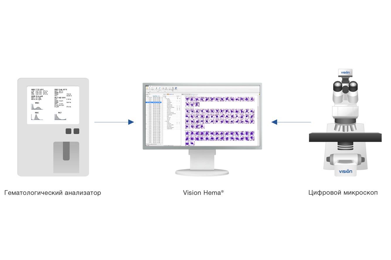 Vision Hema Integro — работа с гематологическим анализатором