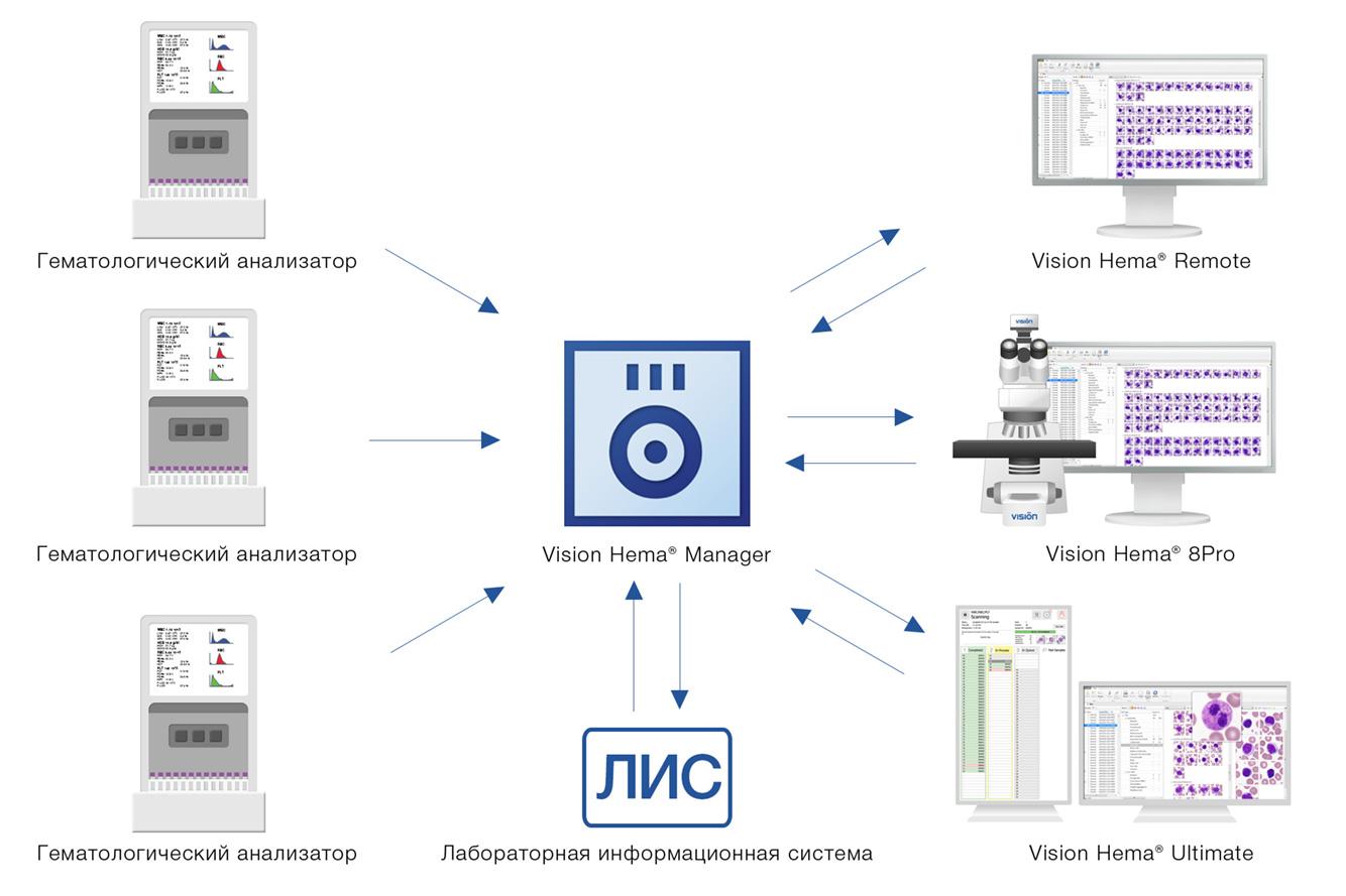 Vision Hema Manager — стандартизация процедуры выполнения анализа мазка крови