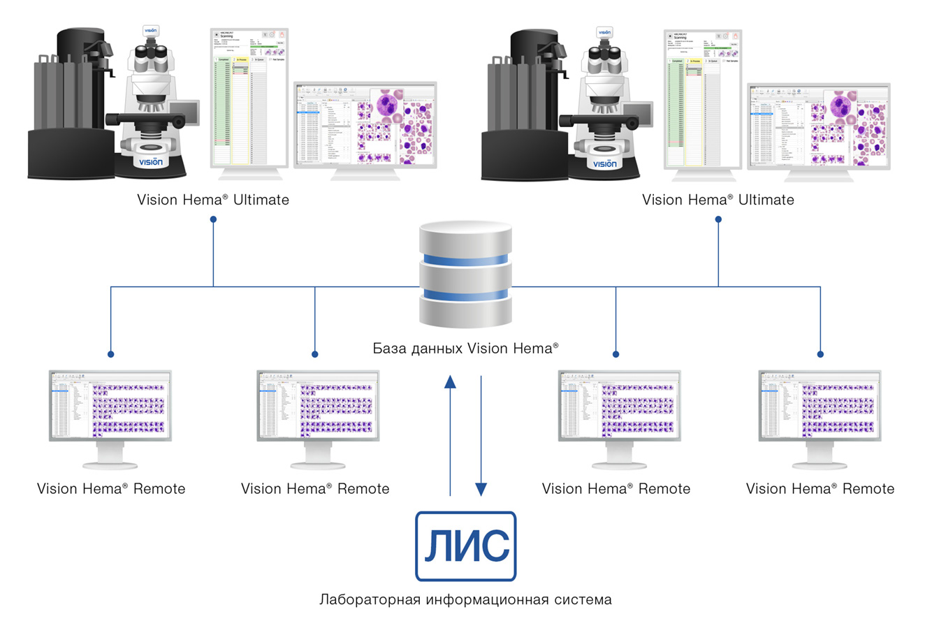 Vision Hema Network — двунаправленное подключение к ЛИС