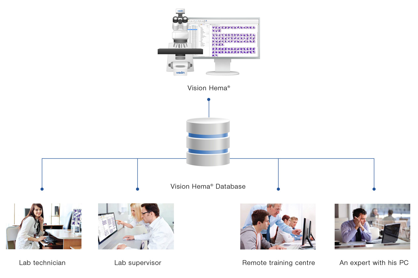 Vision Hema Remote — Remote access to blood smear analysis results